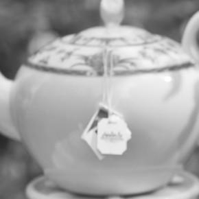 die tea-party - aufstieg einer verloren geglaubten weltanschauung